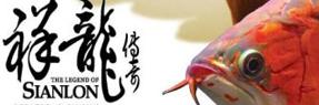 玉林水族批发市场 玉林水族馆 玉林龙鱼